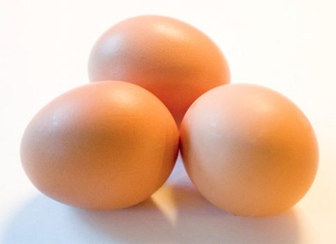 California egg law bodes well for future