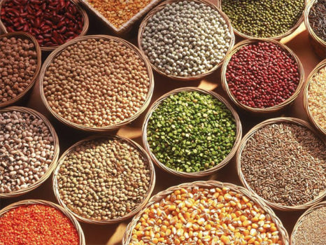 Why are organic grains lagging behind?